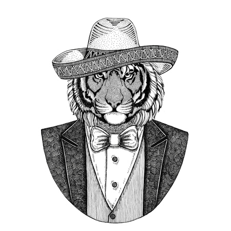 Wild tiger Wild animal wearing Sombrero - traditional Mexican hat Hand drawn illustration for tattoo, emblem, badge, patch, t-shirt