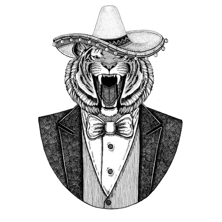 Wild tiger Wild animal wearing Sombrero - traditional mexican hat Hand drawn illustration for tattoo, emblem, logo, badge, patch, t-shirt