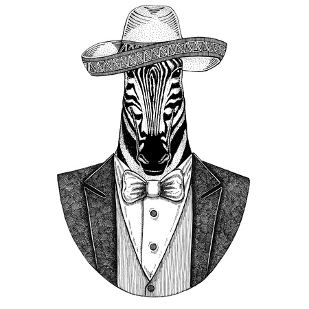Zebra Horse Wild animal wearing Sombrero - traditional mexican hat Hand drawn illustration for tattoo, emblem, logo, badge, patch, t-shirt Stock fotó