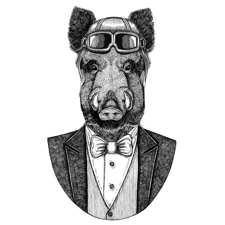 Aper, boar, hog, hog, wild boar Animal wearing aviator helmet and jacket with bow tie Flying club Hand drawn illustration for tattoo, t-shirt, emblem, logo, badge, patch