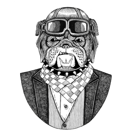 Bulldog Dog Animal wearing aviator helmet and jacket with bow tie Flying club Hand drawn illustration for tattoo, t-shirt, emblem, logo, badge, patch Banco de Imagens