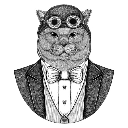 Brithish noble cat Male Animal wearing aviator helmet and jacket with bow tie Flying club Hand drawn illustration for tattoo, t-shirt, emblem, logo, badge, patch Stok Fotoğraf