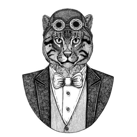 Chat sauvage Chat de pêche Animal portant un casque d'aviateur et une veste avec noeud papillon Flying club Illustration dessinée à la main pour le tatouage, t-shirt, emblème, logo, badge, patch Banque d'images - 92845687