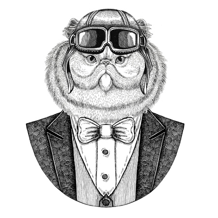 Portrait of fluffy persian cat Animal wearing aviator helmet and jacket with bow tie Flying club Hand drawn illustration for tattoo, t-shirt, emblem, logo, badge, patch Stok Fotoğraf