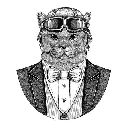Brithish noble cat Male Animal portant casque et veste aviateur avec noeud papillon Flying club Illustration dessinée à la main pour tatouage, t-shirt, emblème, logo, badge, patch Banque d'images - 92796781