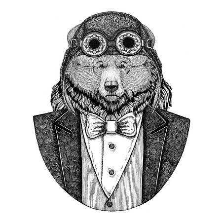 Grizzly bear Big wild bear Animal wearing aviator helmet and jacket with bow tie Flying club Hand drawn illustration for tattoo, t-shirt, emblem, logo, badge, patch Stok Fotoğraf