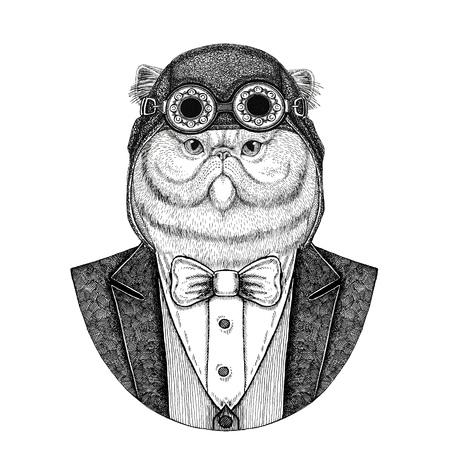 Portrait du chat persan moelleux Animal portant casque aviateur et veste avec noeud papillon Club de vol Illustration dessinés à la main pour le tatouage, t-shirt, emblème, logo, insigne, patch Banque d'images - 92787429
