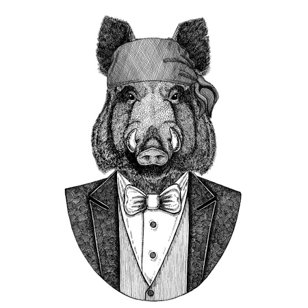 Aper, boar, hog, hog, wild boar Wild biker, pirate animal wearing bandana Hand drawn image for tattoo, emblem, badge, logo, patch, t-shirt