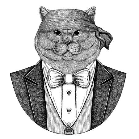 Brithish cat Wild biker, pirate animal wearing bandana Hand drawn image for tattoo, emblem, badge, logo, patch, t-shirt Banque d'images