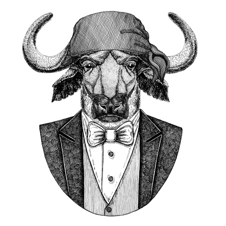 Buffalo, bull, ox Bear, grizzly bear Wild biker, pirate animal wearing bandana Hand drawn image for tattoo, emblem, badge, logo, patch, t-shirt