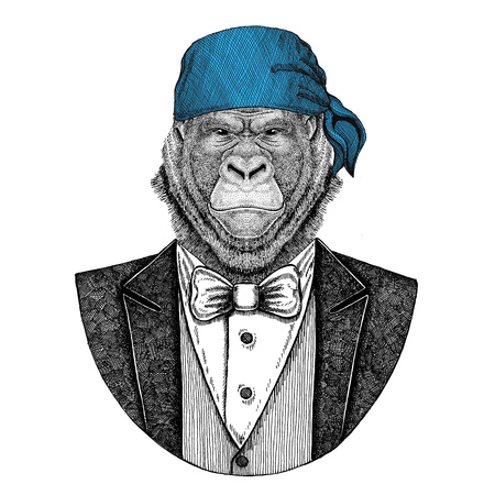Gorilla, monkey, ape Wild biker, pirate animal wearing bandana Hand drawn image for tattoo, emblem, badge, logo, patch, t-shirt