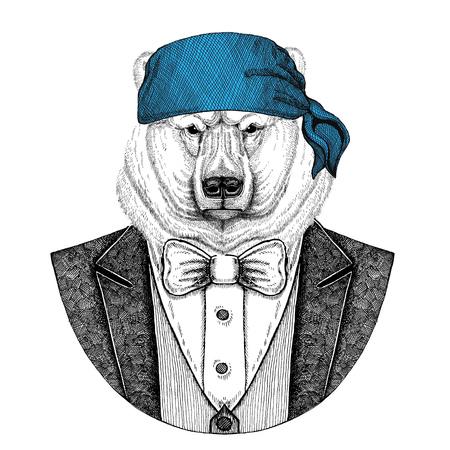 Bear, polar bear Wild biker, pirate animal wearing bandana Hand drawn image for tattoo, emblem, badge, logo, patch, t-shirt Stock Photo