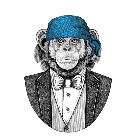 Chimpanzee, monkey Wild biker, pirate animal wearing bandana Hand drawn image for tattoo, emblem, badge, logo, patch, t-shirt Reklamní fotografie