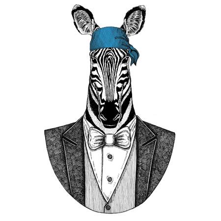 Zebra, horse Wild biker, pirate animal wearing bandana Hand drawn image for tattoo, emblem, badge, logo, patch, t-shirt Stock Photo