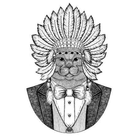 Brithish noble cat Male Wild animal wearing inidan hat, head dress with feathers Hand drawn image for tattoo, t-shirt, emblem, badge, logo, patch