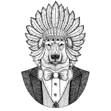 Polar bear Wild animal wearing inidan hat, head dress with feathers Hand drawn image for tattoo, t-shirt, emblem, badge, logo, patch