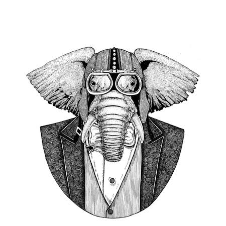 아프리카 또는 인도 코끼리 나비 넥타이와 자전거 타는 사람 헬멧이나 아령 헤어핀 재킷을 입고하는 동물. 우아한 바이, 오토바이 라이더, 비행사. 문 스톡 콘텐츠