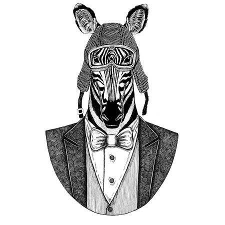 Zebra Horse Animal wearing jacket with bow-tie and biker helmet or aviatior helmet. Elegant biker, motorcycle rider, aviator. Image for tattoo, t-shirt, emblem, badge, logo, patch