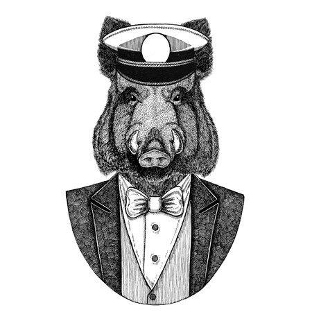 Aper, boar, hog, wild boar Animal wearing jacket with bow-tie and capitans peaked cap Elegant sailor, navy, capitan, pirate. Image for tattoo, t-shirt, emblem, badge, logo, patches