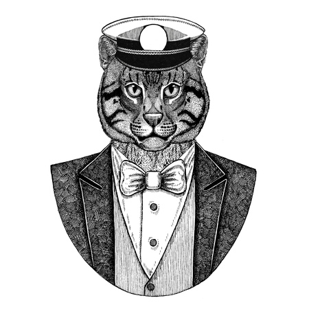 Wild cat Fishing cat Animal wearing jacket with bow-tie and capitans peaked cap Elegant sailor, navy, capitan, pirate. Image for tattoo, t-shirt, emblem, badge, logo, patches