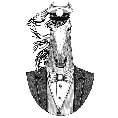 Horse, hoss, knight, steed, courser Animal wearing jacket with bow-tie and capitans peaked cap Elegant sailor, navy, capitan, pirate. Image for tattoo, t-shirt, emblem, badge, logo, patches Stock Photo