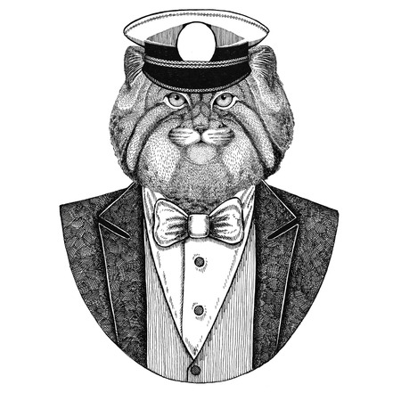 Wild cat Manul Animal wearing jacket with bow-tie and capitans peaked cap Elegant sailor, navy, capitan, pirate. Image for tattoo, t-shirt, emblem, badge, logo, patches