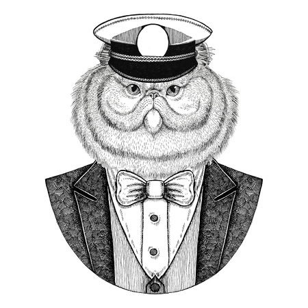 Portrait of fluffy persian cat Animal wearing jacket with bow-tie and capitans peaked cap Elegant sailor, navy, capitan, pirate. Image for tattoo, t-shirt, emblem, badge, logo, patches