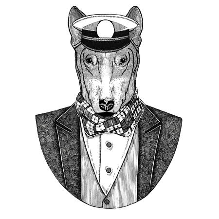DOG for t-shirt design Animal wearing jacket with bow-tie and capitans peaked cap Elegant sailor, navy, capitan, pirate. Image for tattoo, t-shirt, emblem, badge, logo, patches