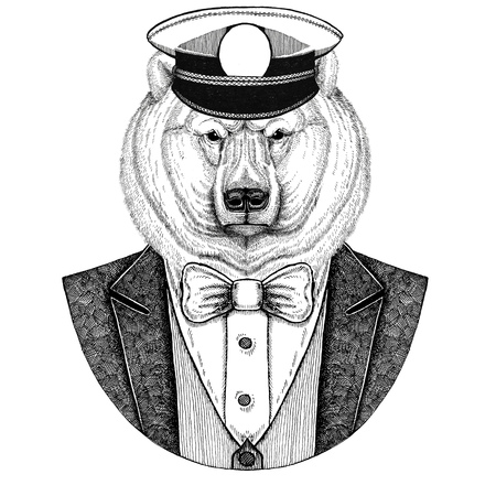 Polar bear, white bear Animal wearing jacket with bow-tie and capitans peaked cap Elegant sailor, navy, capitan, pirate. Image for tattoo, t-shirt, emblem, badge, logo, patches