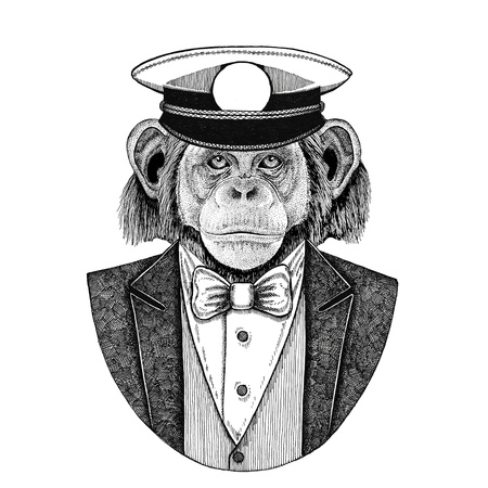Chimpanzee Monkey Animal wearing jacket with bow-tie and capitans peaked cap Elegant sailor, navy, capitan, pirate. Image for tattoo, t-shirt, emblem, badge, logo, patches Stock Photo