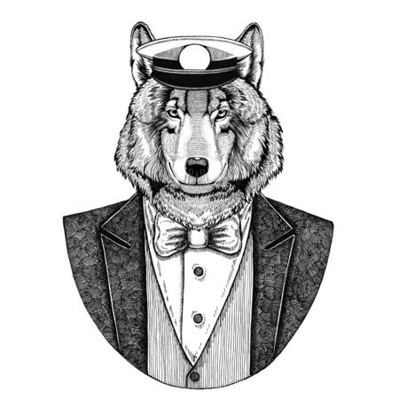 Wolf Dog Animal wearing jacket with bow-tie and capitans peaked cap Elegant sailor, navy, capitan, pirate. Image for tattoo, t-shirt, emblem, badge, logo, patches