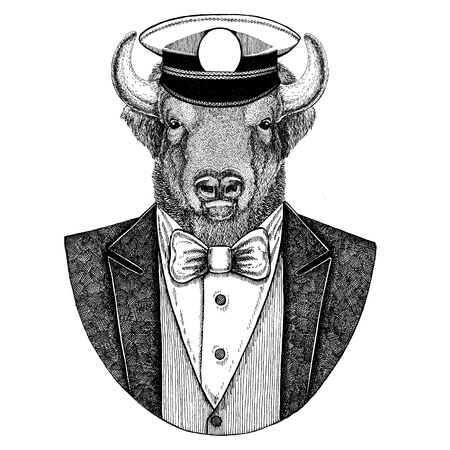 Buffalo, bison,ox, bull Animal wearing jacket with bow-tie and capitans peaked cap Elegant sailor, navy, capitan, pirate. Image for tattoo, t-shirt, emblem, badge, logo, patches Stock Photo
