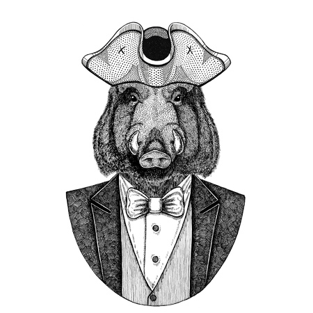 Aper, boar, hog, wild boar Animal wearing cocked hat, tricorn Hand drawn image for tattoo, t-shirt, emblem, badge, logo, patches
