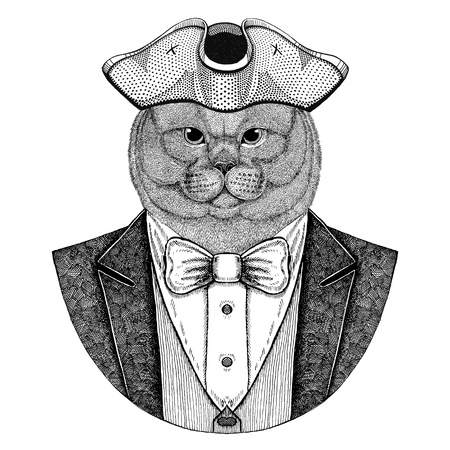 Brithish noble cat Male Animal wearing cocked hat, tricorn Hand drawn image for tattoo, t-shirt, emblem, badge, logo, patches