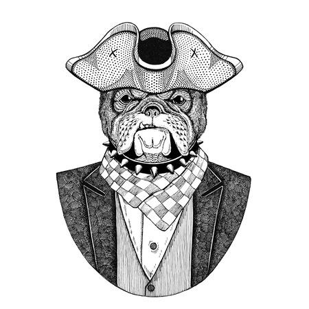 Bulldoggen-Tier, das gespannten Hut, gezeichnetes Bild des Dreikorns Hand für Tätowierung, T-Shirt, Emblem, Ausweis, Logo, Flecken trägt Standard-Bild - 92813500