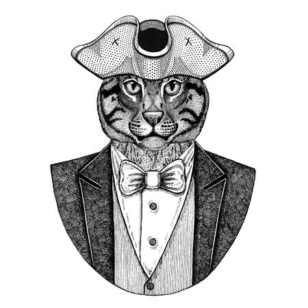 Wildkatze Fischenkatze Tier, das gespannten Hut, Tricorn trägt Hand gezeichnetes Bild für Tätowierung, T-Shirt, Emblem, Ausweis, Logo, Flecken Standard-Bild - 92813504