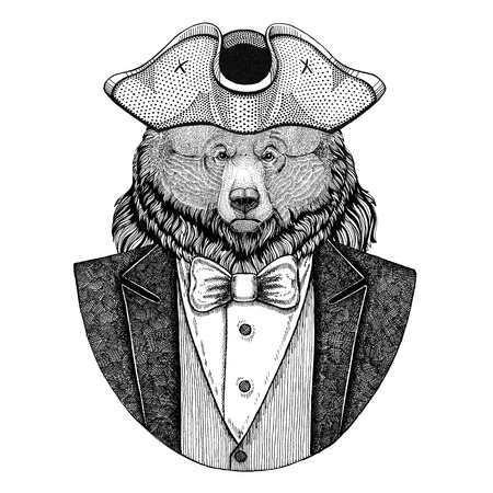 Grizzly bear Big wild bear Animal wearing cocked hat, tricorn Hand drawn image for tattoo, t-shirt, emblem, badge, logo, patches Stock Photo