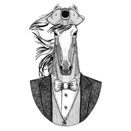 Horse, hoss, knight, steed, courser Animal wearing cocked hat, tricorn Hand drawn image for tattoo, t-shirt, emblem, badge, logo, patches Stock Photo