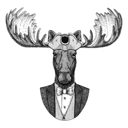 Moose, elk Animal wearing cocked hat, tricorn Hand drawn image for tattoo, t-shirt, emblem, badge, logo, patches