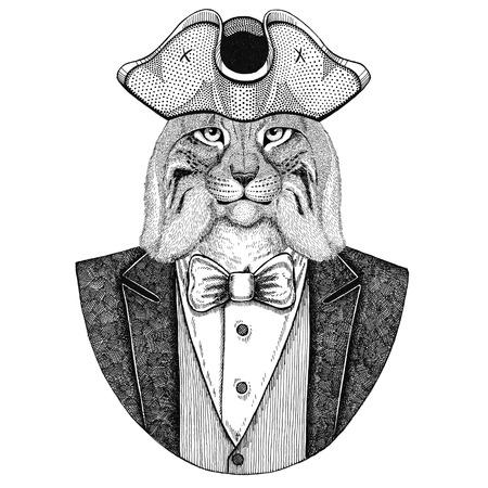 Wild cat, Lynx, Bobcat, Trot Animal wearing cocked hat, tricorn Hand drawn image for tattoo, t-shirt, emblem, badge, logo, patches Reklamní fotografie