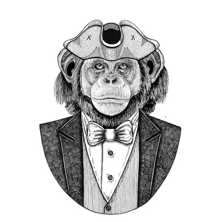 Chimpanzee, Monkey, ape Animal wearing cocked hat, tricorn Hand drawn image for tattoo, t-shirt, emblem, badge, logo, patches