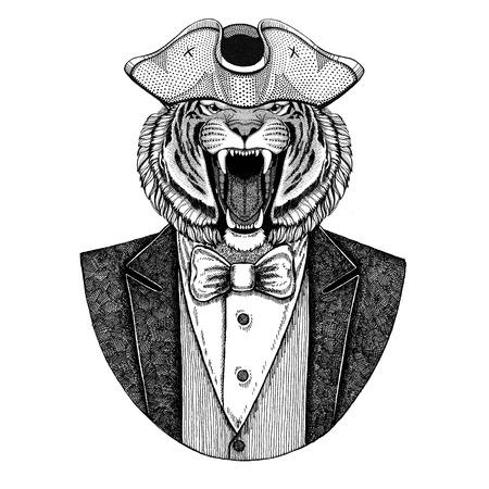 Das wilde Tiger Tier, das gespannten Hut, Tricorn trägt, übergeben gezogenes Bild für Tätowierung, T-Shirt, Emblem, Ausweis, Logo, Flecken Standard-Bild - 92813605