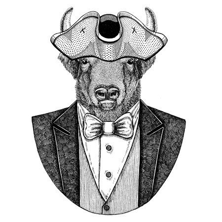 Buffalo, bison,ox, bull Animal wearing cocked hat, tricorn Hand drawn image for tattoo, t-shirt, emblem, badge, logo, patches