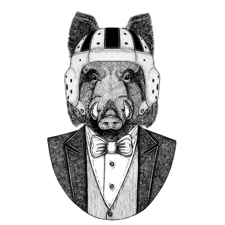 Aper, boar, hog, wild boar Elegant rugby player. Old school vintage rugby helmet. American football. Vintage style illustration for tattoo, emblem, badge, logo, patch, t-shirt