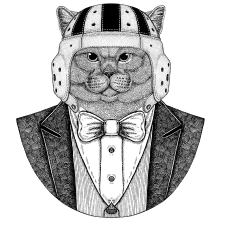 Brithish cat Elegante rugbyspeler. Old school vintage rugbyhelm. Amerikaans voetbal. Vintage stijl illustratie voor tattoo, embleem, badge, logo, patch, t-shirt Stockfoto