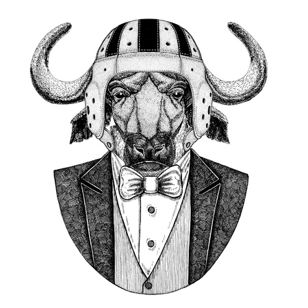 Buffalo, bull, ox Elegant rugby player. Old school vintage rugby helmet. American football. Vintage style illustration for tattoo, emblem, badge, logo, patch, t-shirt