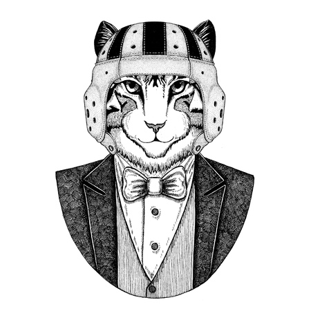Image of domestic cat Elegant rugby player. Old school vintage rugby helmet. American football. Vintage style illustration for tattoo, emblem, badge, logo, patch, t-shirt