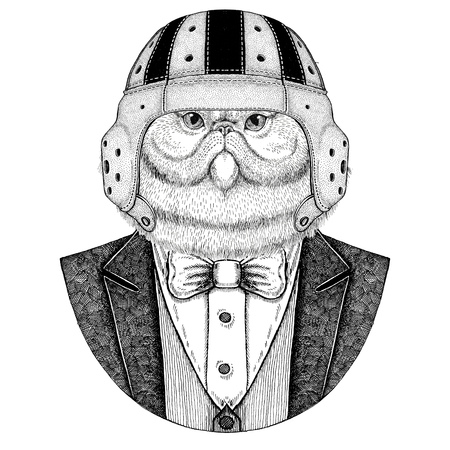 Portrait of fluffy persian cat Elegant rugby player. Old school vintage rugby helmet. American football. Vintage style illustration for tattoo, emblem, badge, logo, patch, t-shirt