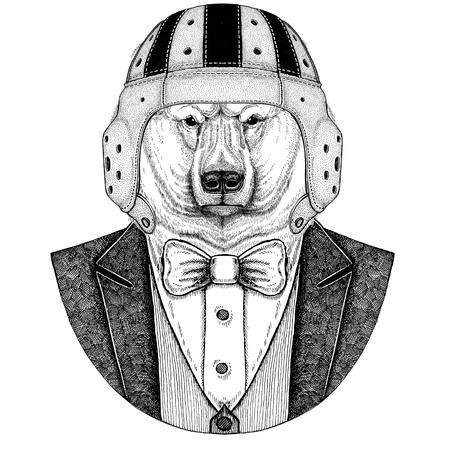 Polar bear Elegant rugby player. Old school vintage rugby helmet. American football. Vintage style illustration for tattoo, emblem, badge, logo, patch, t-shirt Stock Photo