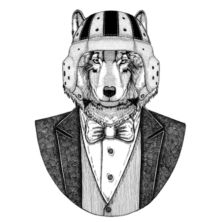 Wolf, Dog Elegant rugby player. Old school vintage rugby helmet. American football. Vintage style illustration for tattoo, emblem, badge, logo, patch, t-shirt
